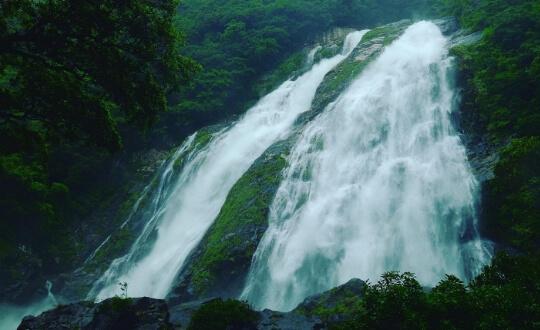 Waterfall in Yakushima Island in Japan